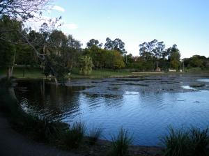 uq campus lake