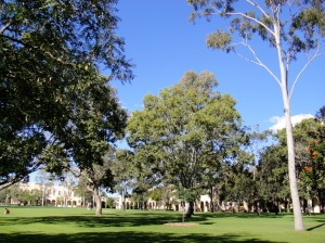on campus; part of the great court