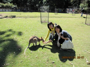 feeding a kangaroo—w/my apartmentmate from china!
