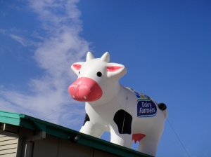 hello there, ginormous cow on the roof