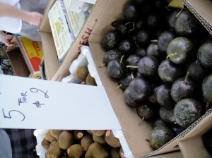 passion fruit! ive never seen it in person.. tag: amy cheng, since she loves passion fruit!!